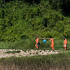 Farmer workers walking in field, Laos