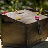 Close-up of donation box, Luang Prabang, Laos
