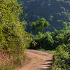 Dirt road passing through forest, Luang Prabang, Laos