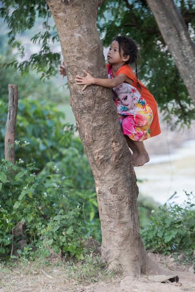 Girl climbing on tree, Ban Gnoyhai, Luang Prabang, Laos