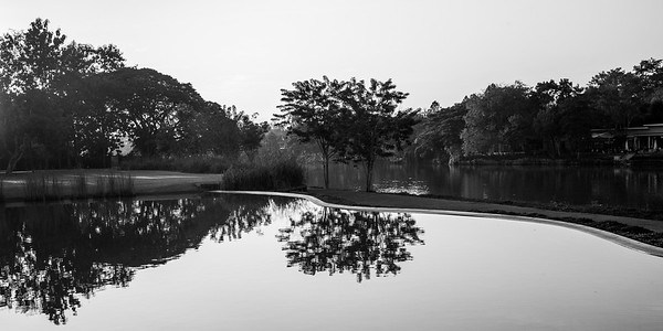 Reflection of trees in water, Chiang Rai, Thailand