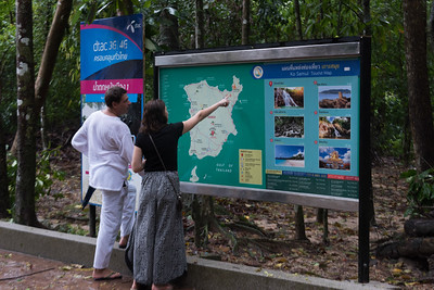 Couple checking tourist map on board, Koh Samui, Surat Thani Province, Thailand