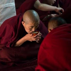 tibetnr12008.jpg