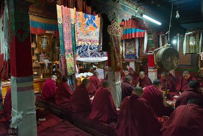 tibetnr12023.jpg