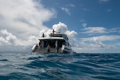 Tourists on yacht in the ocean, Port Douglas, Queensland, Australia