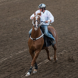 Jockey riding horse at the annual Calgary Stampede, Calgary, Alberta, Canada