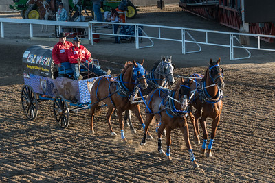 Chuckwagon racing at the annual Calgary Stampede, Calgary, Alberta, Canada