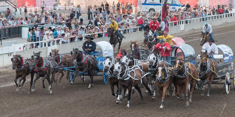 Chuckwagons line-up or racing during Calgary Stampede, Calgary, Alberta, Canada