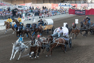 Chuckwagons racing during Calgary Stampede, Calgary, Alberta, Canada