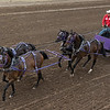 Chuckwagons racing during Calgary Stampede, Calgary, Alberta, Canada