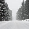 Snow covered road with trees in winter, Banff National Park, Alberta, Canada