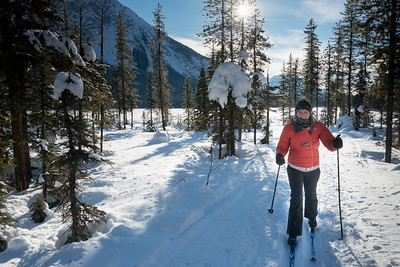 Woman cross country skiing, Field, British Columbia, Canada