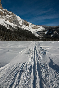 Ski tracks in snow covered landscape with mountain in winter, Field, British Columbia, Canada