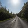 Empty road amidst trees in forest, Cape Breton Island, Nova Scotia, Canada