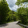 Empty road amidst trees in forest, Pleasant Bay, Cape Breton Highlands National Park, Cape Breton Island, Nova Scotia, Canada