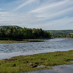 Scenic view of a river in forest, Ceilidh Trail, Cape Breton Island, Nova Scotia, Canada