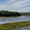 Scenic view of a river in forest, Ceilidh Trail, Cape Breton Island, Nova Scotia, Canada