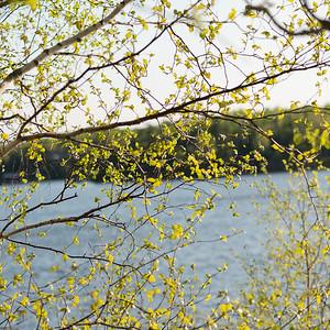 lake12026.jpg