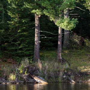 lake12011.jpg