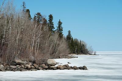 Trees at the lakeside, Lake Winnipeg, Hecla Grindstone Provincial Park, Manitoba, Canada