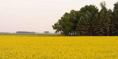 prairies12043.jpg