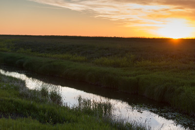 prairies12028.jpg