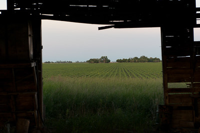 prairies12018.jpg