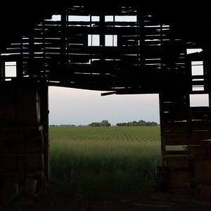 prairies12006.jpg