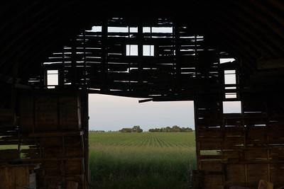 prairies12017.jpg