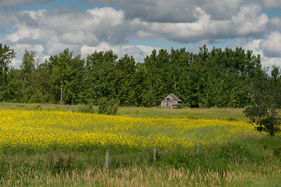 Abandoned Farmhouse in a field, Lake Audy Campground, Riding Mountain National Park, Manitoba, Canada