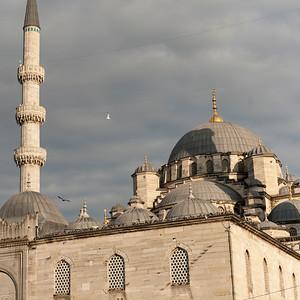 turk12126.jpg