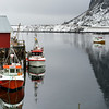 Boats moored at harbor, Lofoten, Nordland, Norway