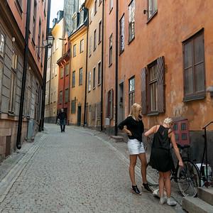 swednr11355.jpg