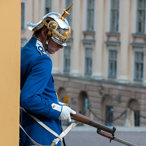swednr11369.jpg