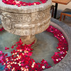 Petals in fountain in a cafe, San Miguel de Allende, Guanajuato, Mexico