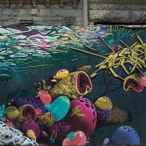 Poster representing underwater sea life, Seattle, Washington State, USA