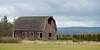 Barn in a field, Mount Vernon, Skagit County, Washington State, USA