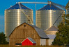 Granary and Barns; Tuscola County, Michigan