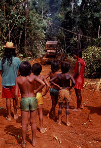 For centuries the Amazonian forest has been a nourishing mother for the Kayapo, who survive mostly on hunting, fishing and gathering. But with the high demand of log and self-indulgence of the leaders of Kayapo tribe, the rain forest is being deforested in a rapid way, which is causing global warming.   Kayapo, Brazilain Amazon.