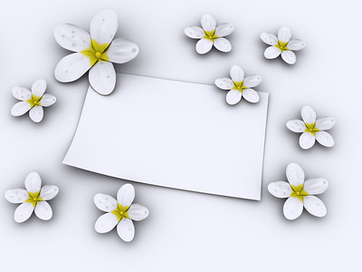 White flowers and blank paper on white background  - rendered in 3d