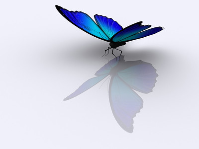 A blue butterfly on white background - rendered in 3d