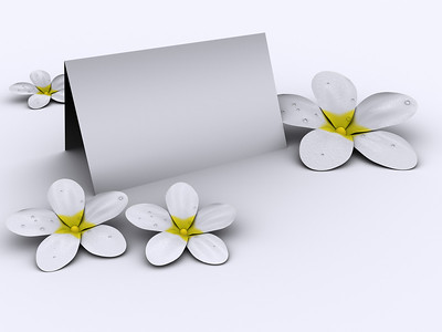 White flowers and blank paper on white background rendered in 3d