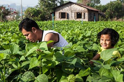 Pyin Oo Lwin, Myanmar.