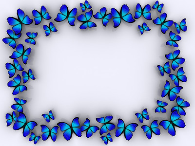 A butterflys on white background - rendered in 3d