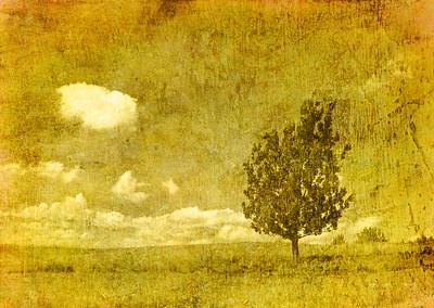 vintage image of tree on grunge background