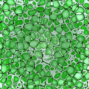 biology cellulate  texture background (green leaf)