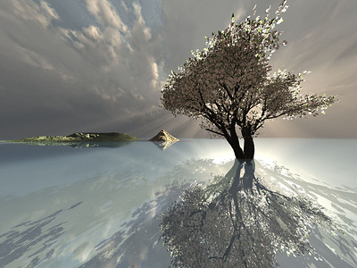 3d render of a lonely tree standing in the water, cloudy sky and Islands in the background.  Rendu 3d d'un arbre et d'une île perdus dans la mer.