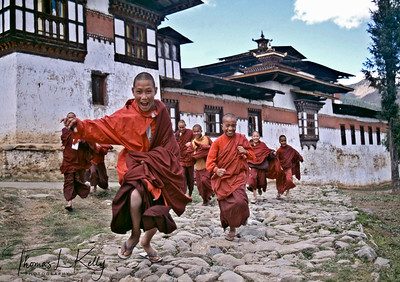 Young monks running out of Gangtey Monastery. Phobjika, Bhutan.