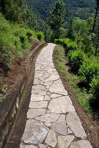 Stone paved walkway to Khamsum Yuelley Namgyel chorten built by Queen Mother for  his son Druk Gyalpo, Jigme Khesar Namgyel Wangchuk.