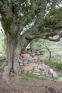 Shrine built under a tree outside a Bhutanese farmhouse. Outskirts of Trongsa.